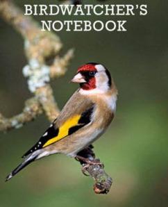 Birdwatching, Kegiatan Menyenangkan yang Belum Banyak Dikenal Orang