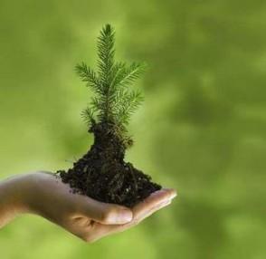 Pengertian Konservasi Sumber Daya Alam Hayati Mpabjustitia